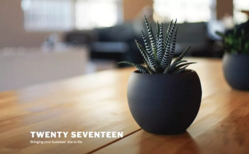 twenty-seventeen theme wordpress