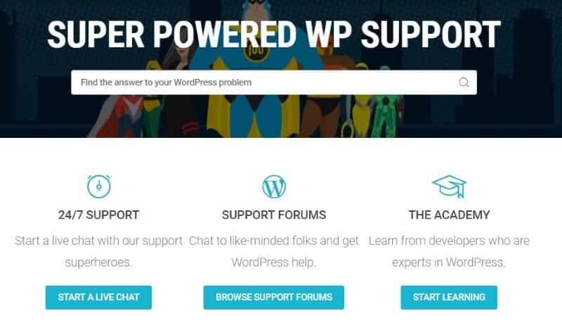 support WPMU DEV